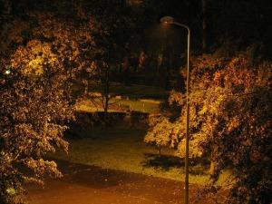 backyard-665661_1280